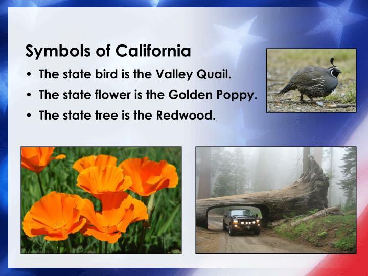 Symbols of california