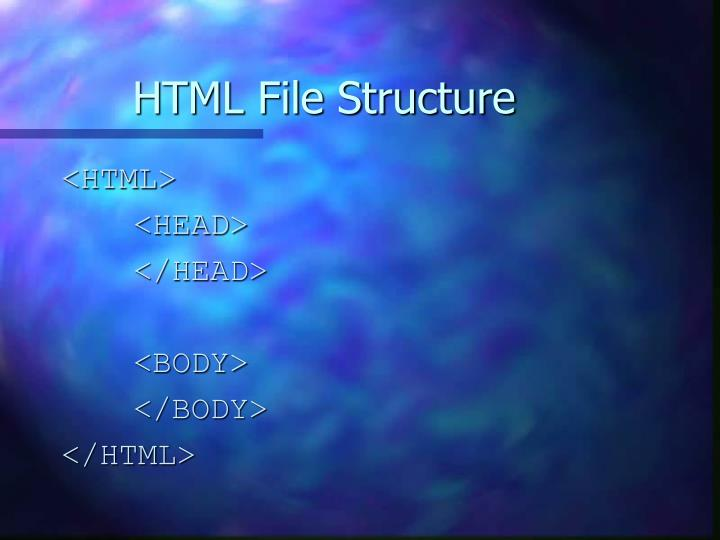 HTML File Structure