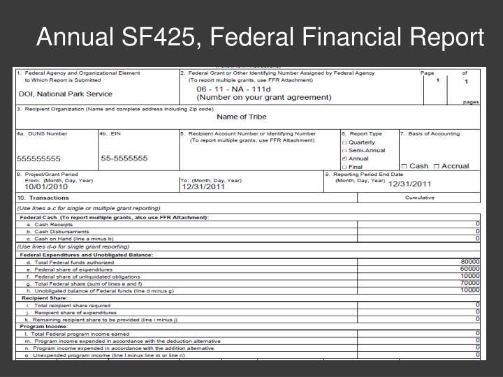 Annual SF425, Federal Financial Report