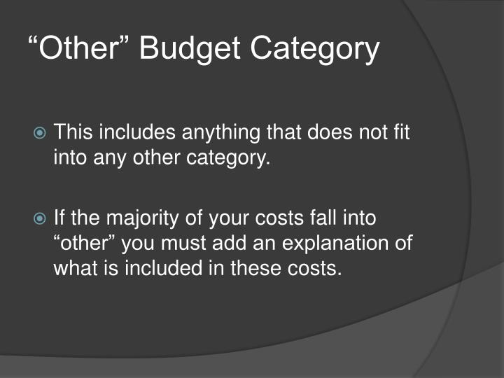"""""""Other"""" Budget Category"""