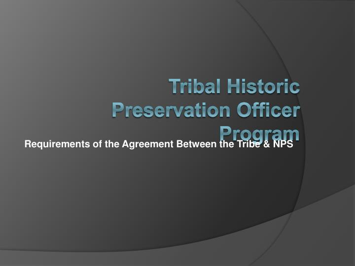Tribal historic preservation officer program