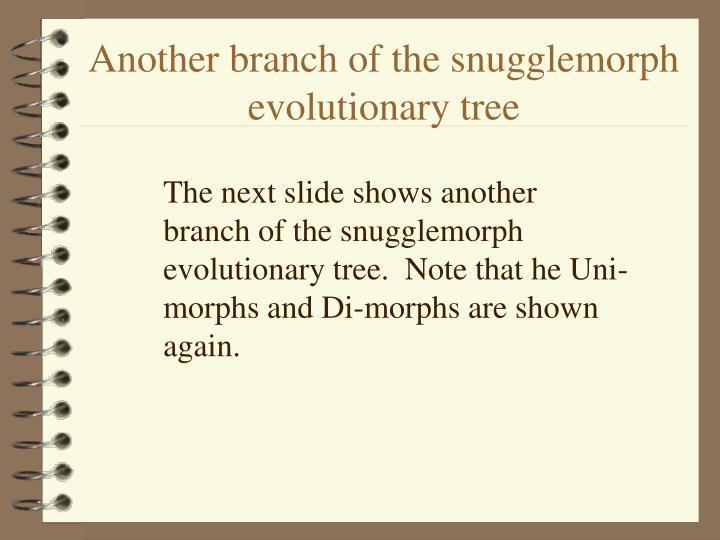 Another branch of the snugglemorph  evolutionary tree