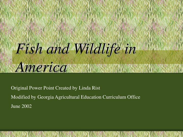 fish and wildlife in america n.