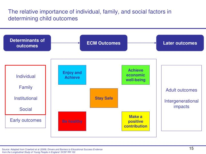 The relative importance of individual, family, and social factors in determining child outcomes