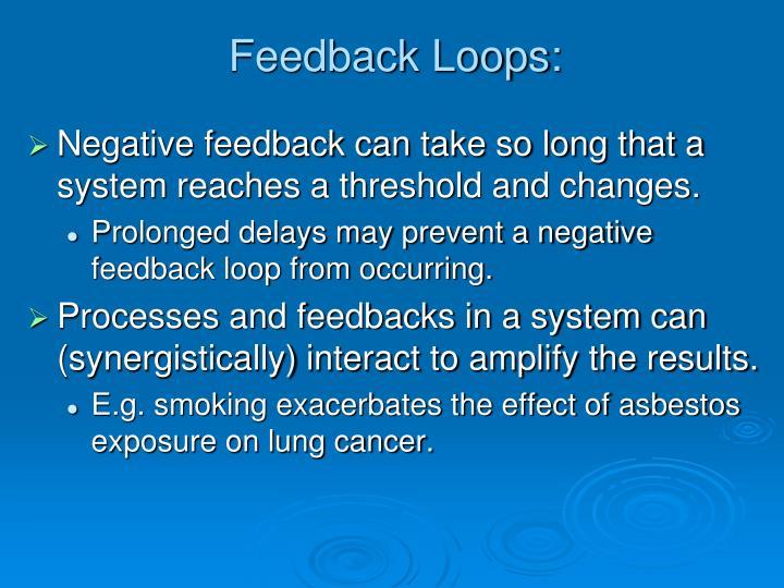 Feedback Loops: