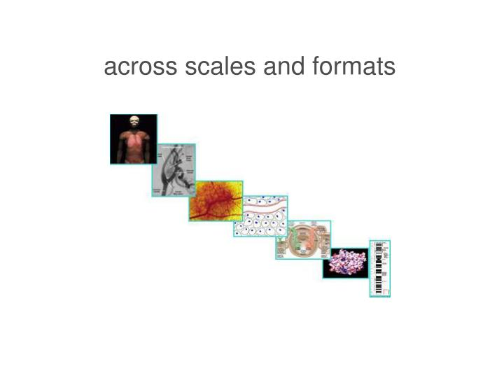 across scales and formats