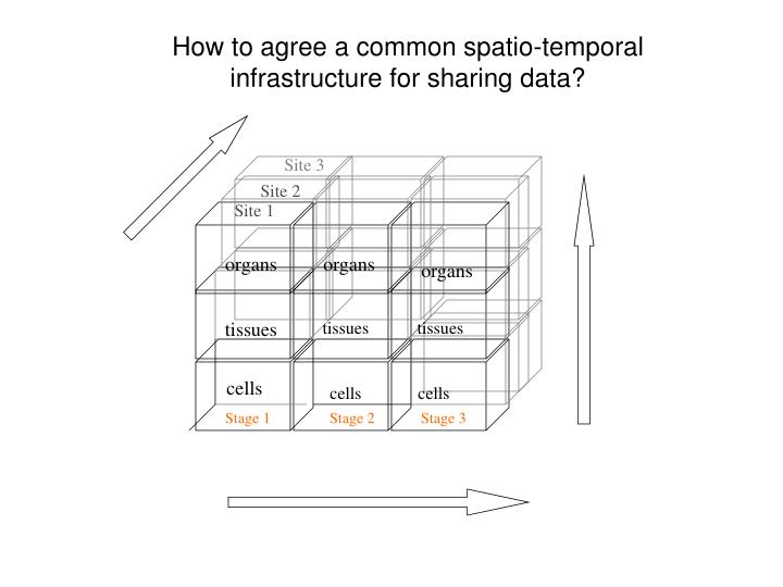 How to agree a common spatio-temporal infrastructure for sharing data?