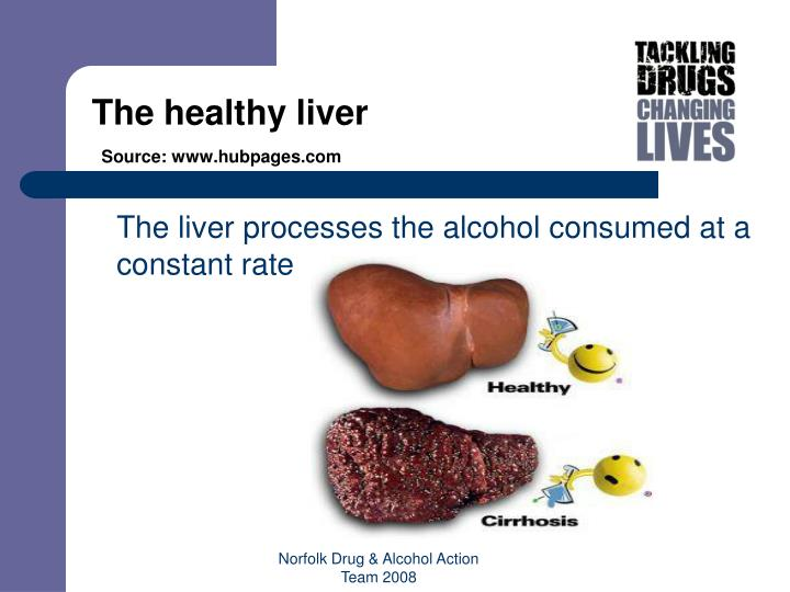 The healthy liver