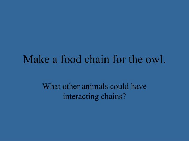 Make a food chain for the owl.