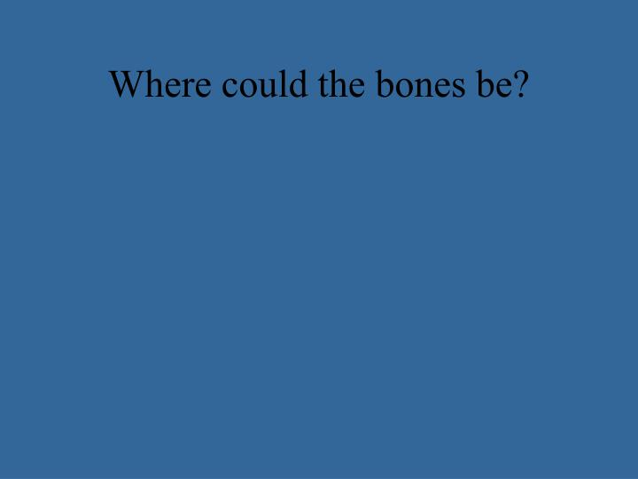 Where could the bones be?