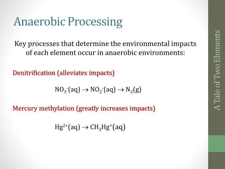 Anaerobic Processing
