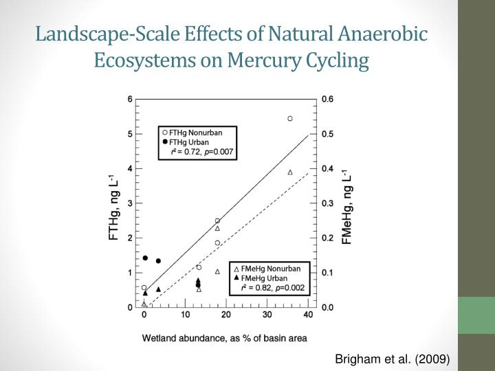 Landscape-Scale Effects of Natural Anaerobic Ecosystems on Mercury Cycling