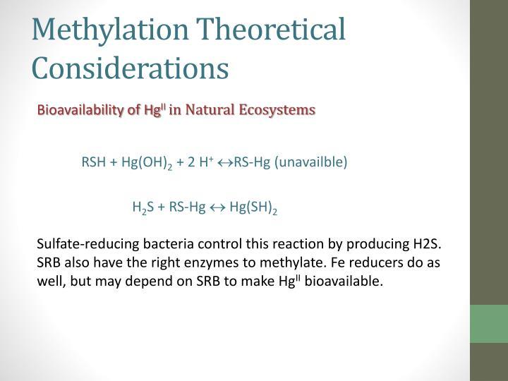 Methylation Theoretical Considerations