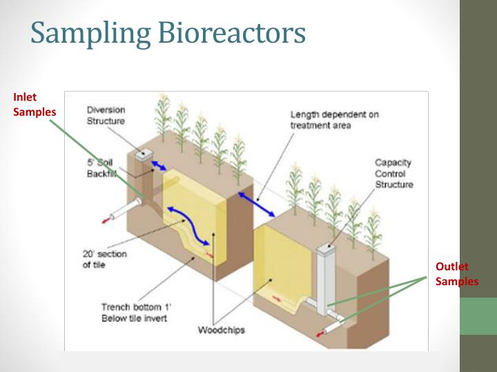 Sampling Bioreactors