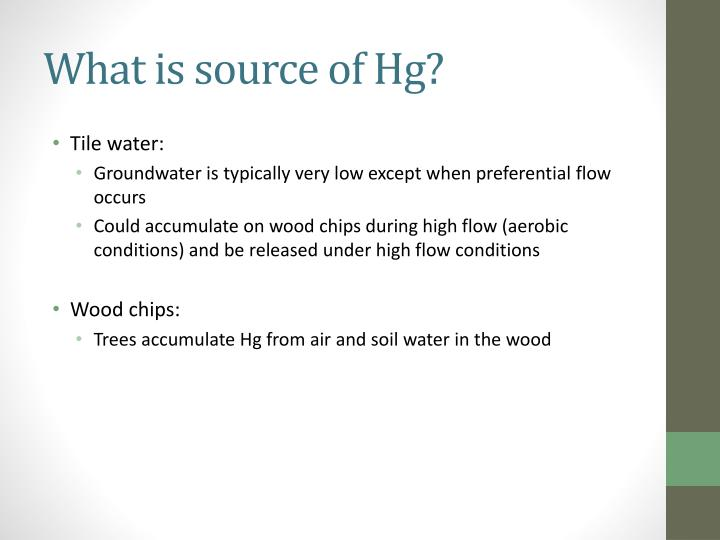 What is source of Hg?