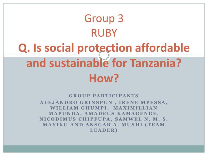 group 3 ruby q is social protection affordable and sustainable for tanzania how n.
