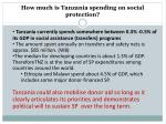 how much is tanzania spending on social protection