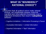 what is boundedly rational choice
