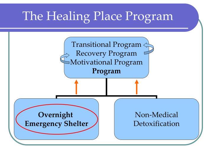 The Healing Place Program