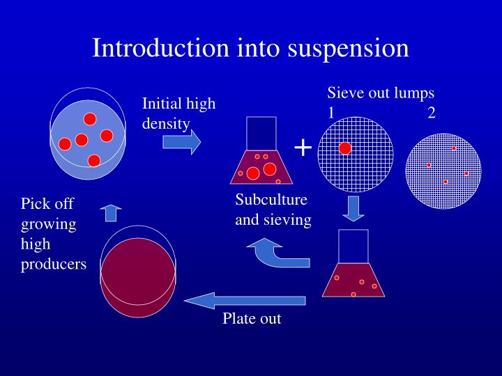Introduction into suspension