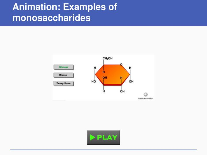 Animation: Examples of monosaccharides