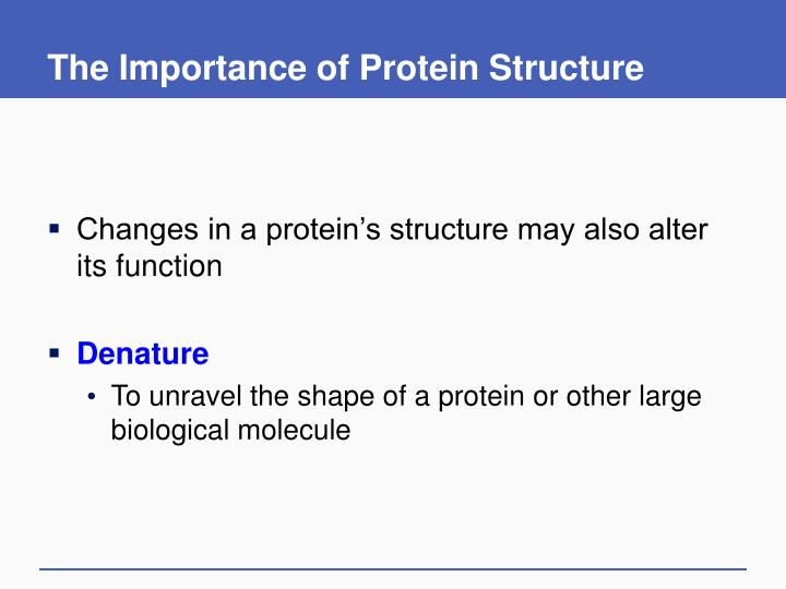 The Importance of Protein Structure