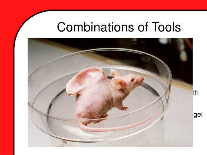 Combinations of Tools