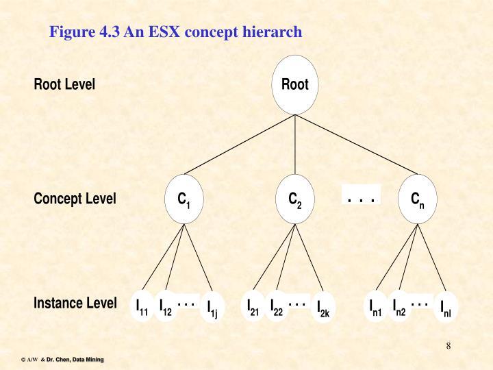 Figure 4.3 An ESX concept hierarch