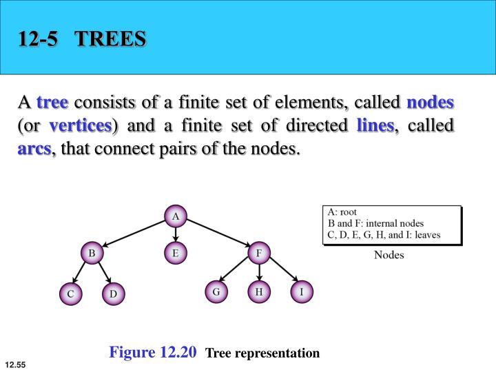 12-5   TREES