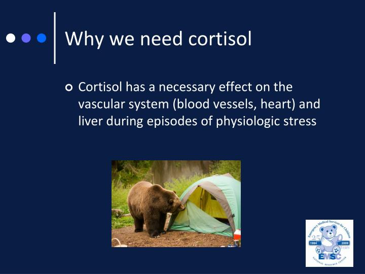 Why we need cortisol