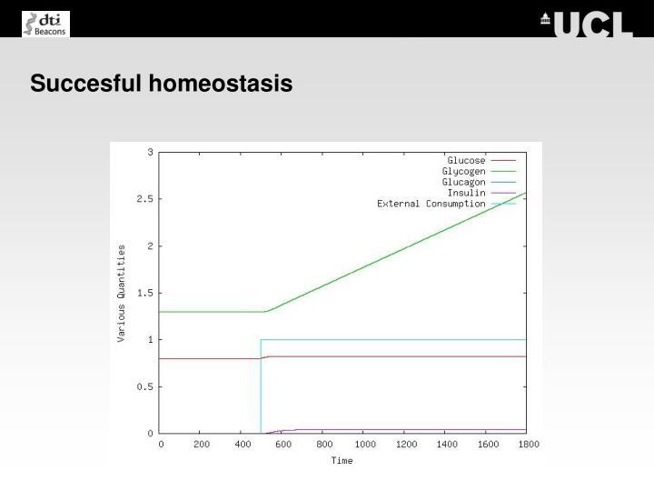 Succesful homeostasis