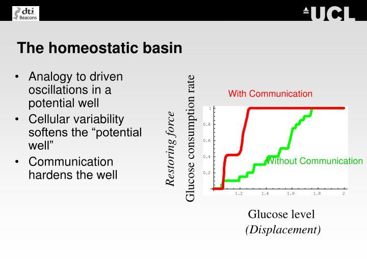The homeostatic basin