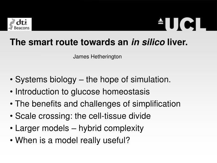The smart route towards an in silico liver