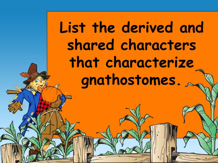 List the derived and shared characters that characterize gnathostomes