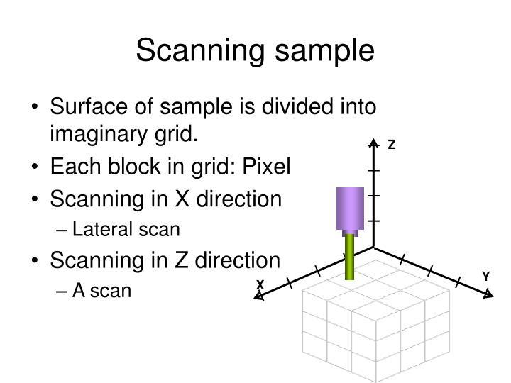 Scanning sample