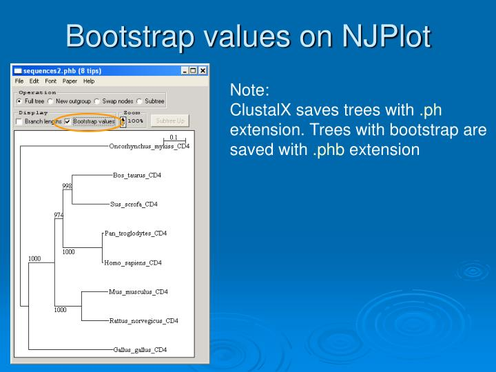 Bootstrap values on NJPlot