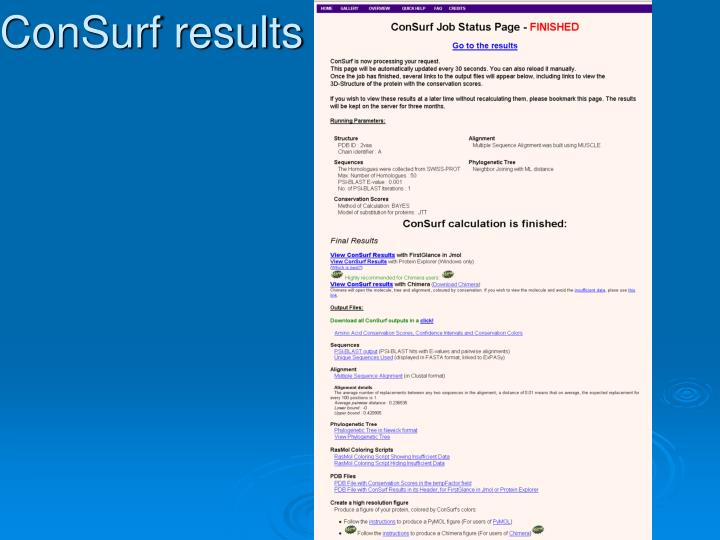 ConSurf results