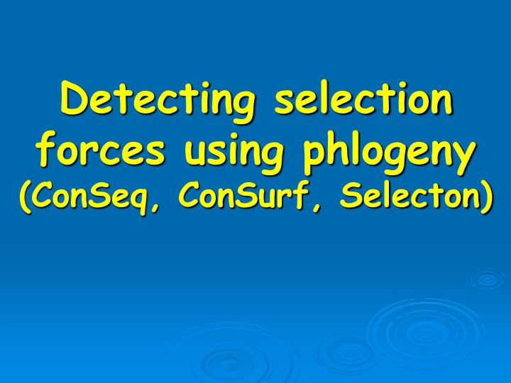 Detecting selection forces using phlogeny