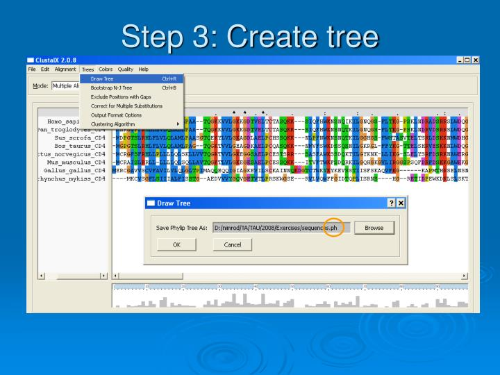 Step 3: Create tree