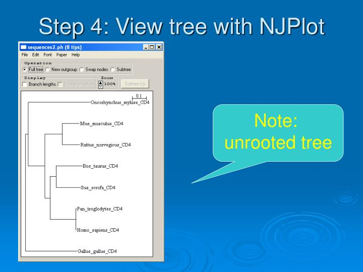 Step 4: View tree with NJPlot