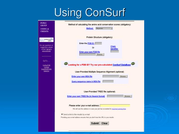 Using ConSurf