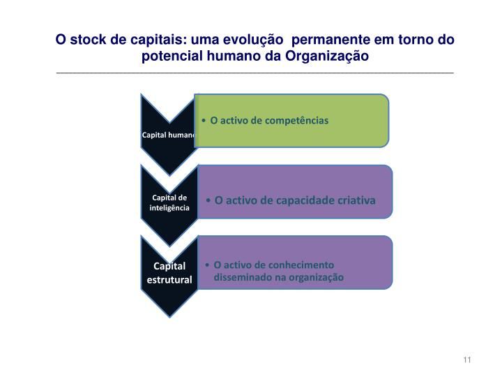 O stock de capitais: uma evolução  permanente em torno do potencial humano da Organização