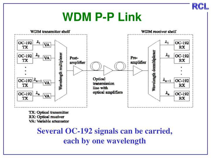 WDM P-P Link
