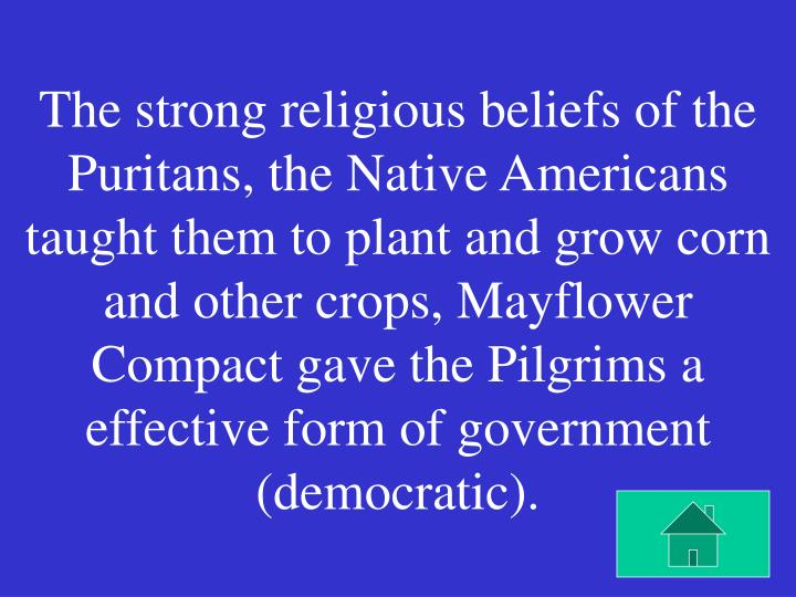 The strong religious beliefs of the Puritans, the Native Americans taught them to plant and grow corn and other crops, Mayflower Compact gave the Pilgrims a effective form of government (democratic).