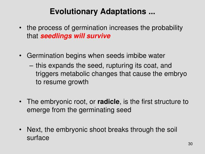 Evolutionary Adaptations ...
