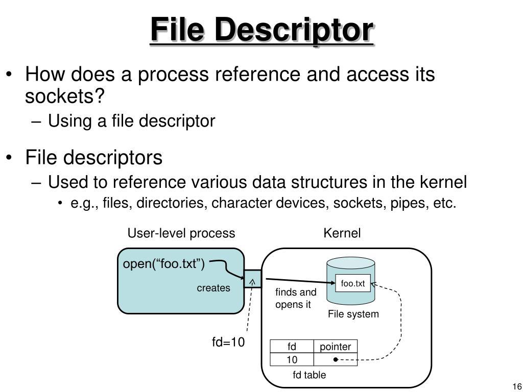 File Descriptor