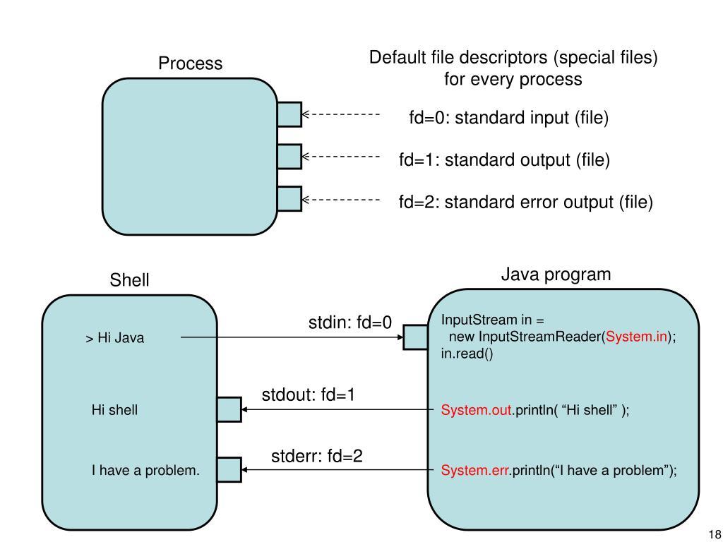 Default file descriptors (special files)