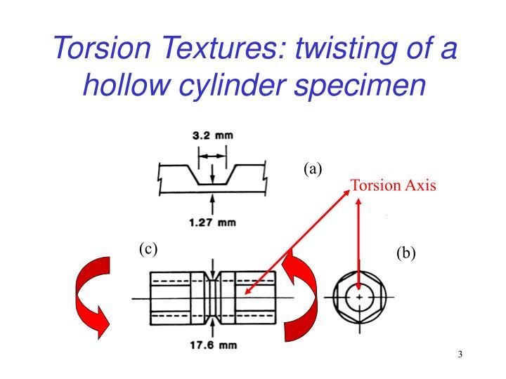 Torsion textures twisting of a hollow cylinder specimen
