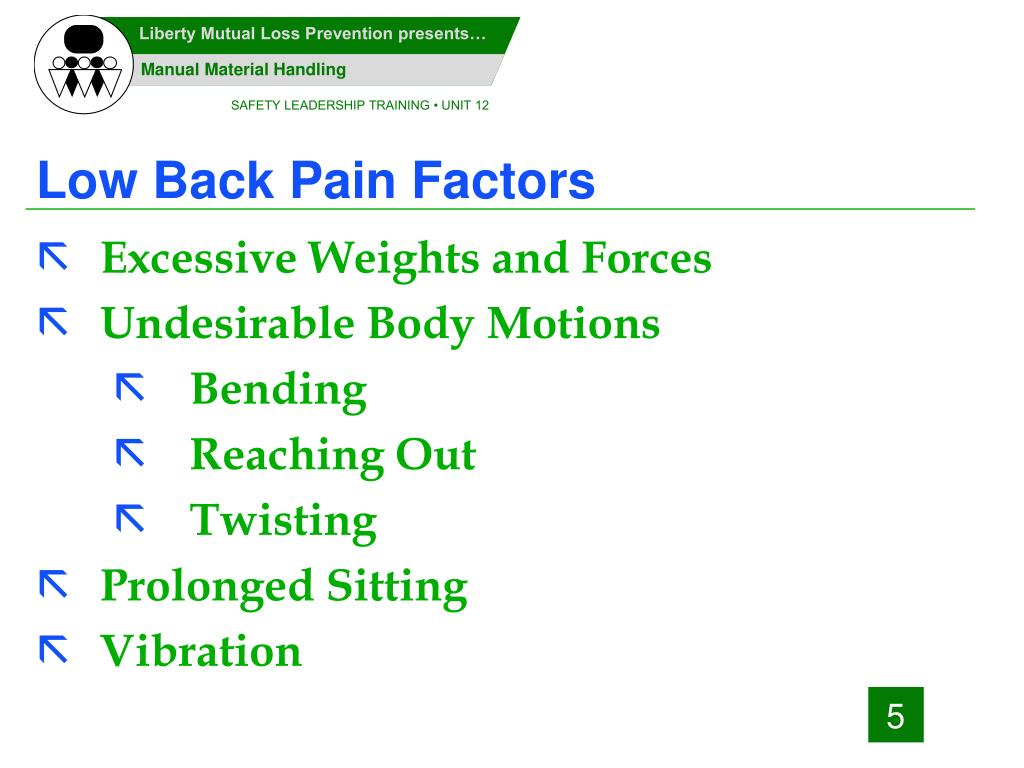 Low Back Pain Factors