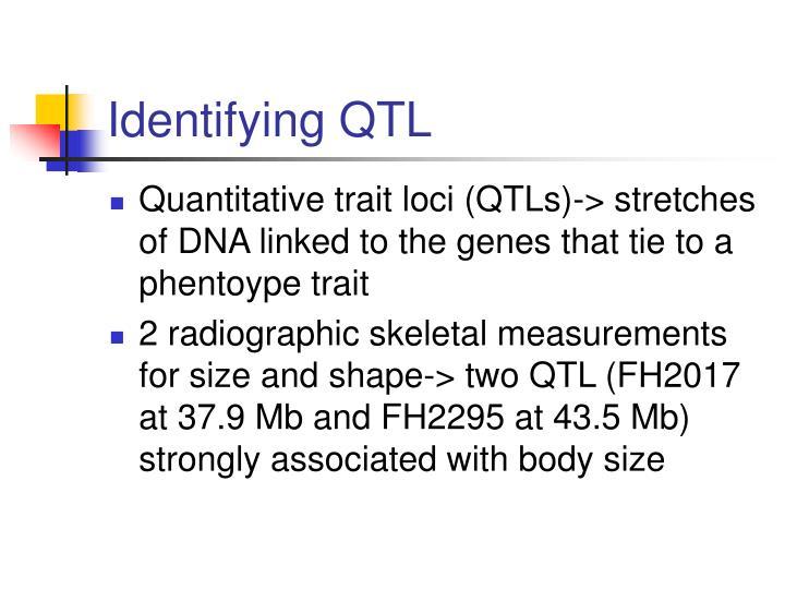 Identifying QTL